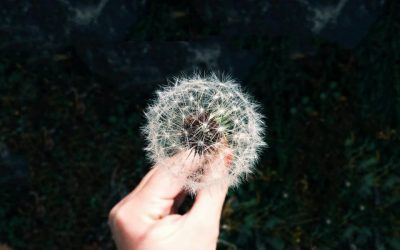 How to help allergies naturally
